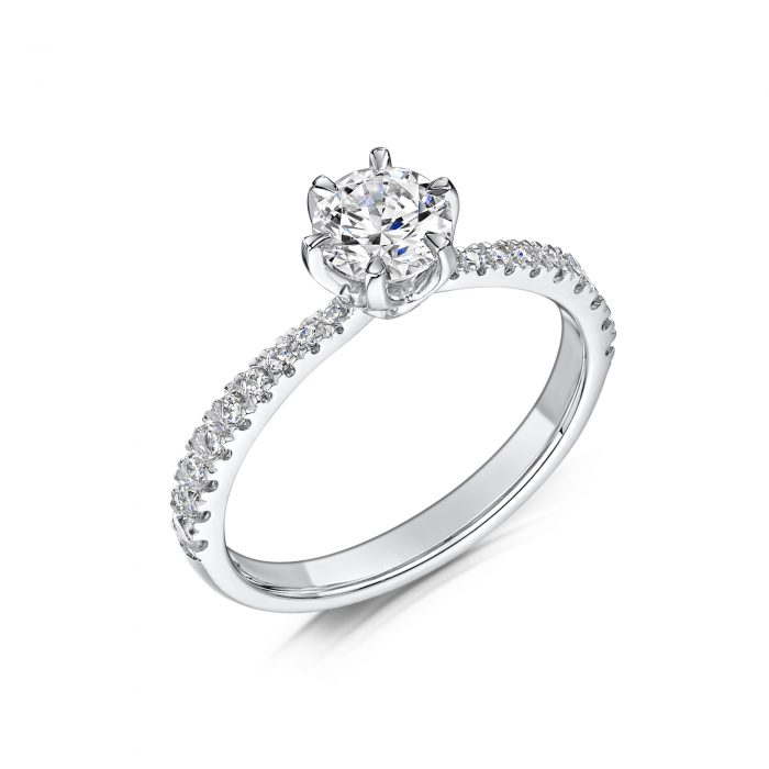 Solitaire Diamond Ring Round Brilliant Cut With Diamonds on edges